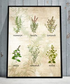 obraz z ziołami