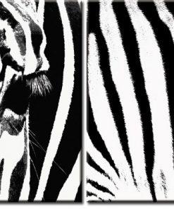 obrazy podwójne