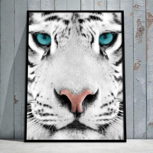 obrazy z tygrysem
