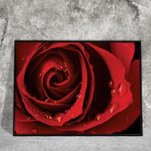 plakaty z kwiatami