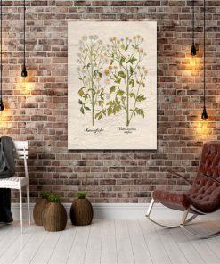 dekoracje z roślinami
