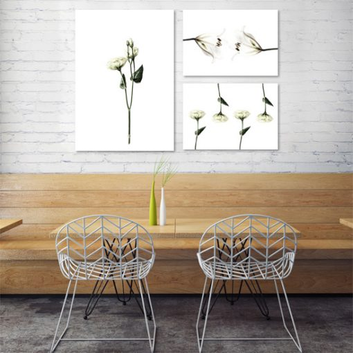 plakaty z kwiatami do jadalni