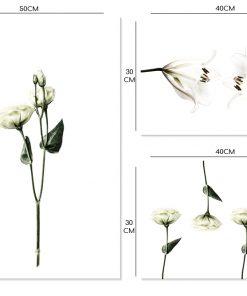 kremowe plakaty z kwiatami