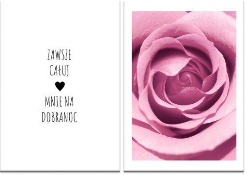róża i napis na plakacie