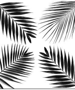 Plakat czarno-biały z motywem tropikalnym