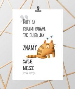 Plakat z motywem kotów