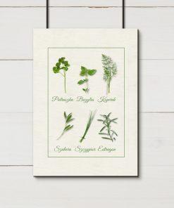 Plakat kremowy z ziołami