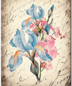 Plakat w stylu vintage z motywem kwiatu irysa