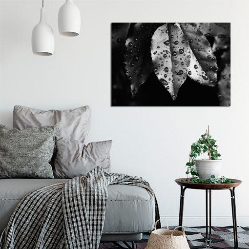 Plakat z liśćmi do salonu