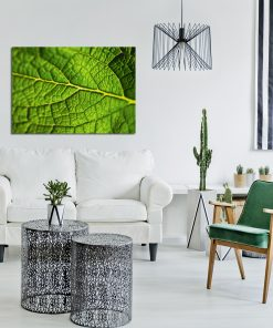 Plakat z zielonym liściem do salonu