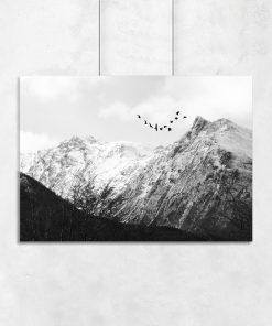 Czarno-biały plakat z krajobrazem