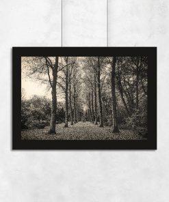 Plakat z motywem drogi pośród drzew