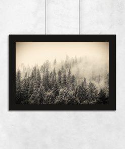 Plakat z motywem lasu i mgły