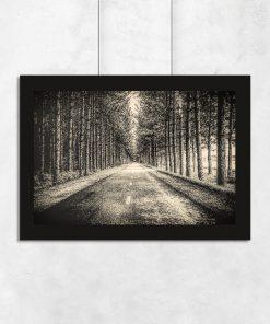 Plakat z drogą w lesie