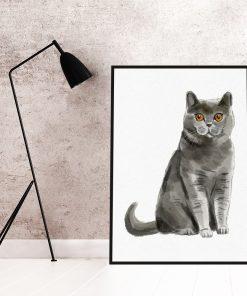 Plakat z kotem brytyjskim do salonu
