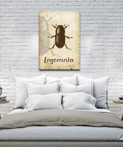 plakat z żukiem