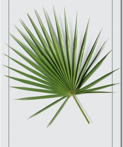 plakat z motywem botanicznym