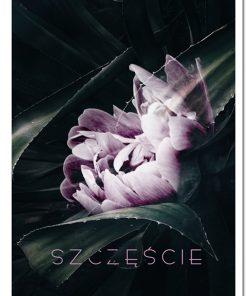 kwiat i napis na plakacie