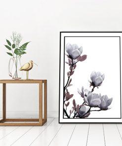 magnolia na plakacie