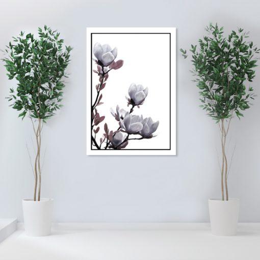 plakaty z magnolią