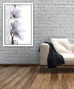 biała magnolia na plakacie