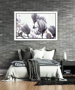 plalakt z magnolią