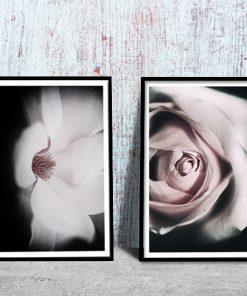 plakaty z motywem różowych kwiatów