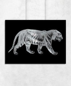 plakaty z tygrysem