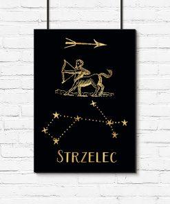 Plakat z motywem znaku zodiaku