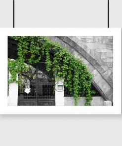 motyw zielonych liści na plakacie