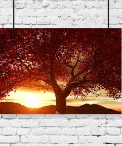 motyw czerwonego drzewa jako plakat