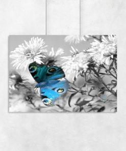 szara dekoracja z motylkiem