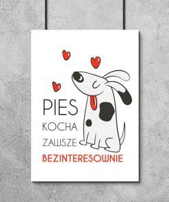plakat z psem jako dekoracja