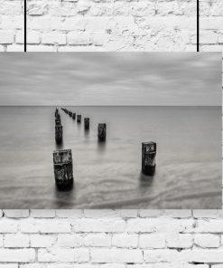 plakat z morzem
