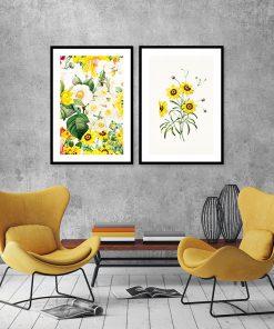żółte kwiaty na plakacie