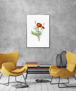 plakat kwiaty aksamitki