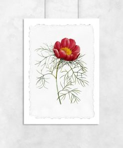 plakat z kwiatem