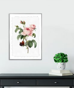 plakat róże i motyl