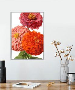 plakat pomarańczowy jako kwiaty