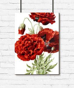 plakat czerwony jako dekoracja