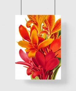 plakat botaniczny jako dekoracja ścienna