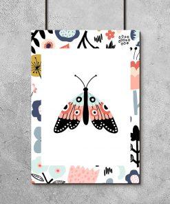 plakat prezentujący motyla