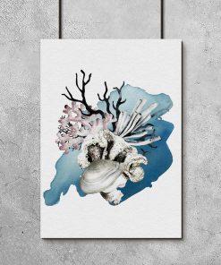 rafa koralowa idealna do łazienki