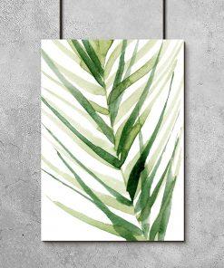 plakat z liściastą gałązką palmy
