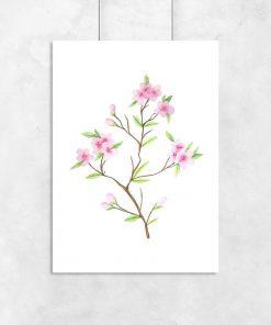 plakat z kwiatami wiśni