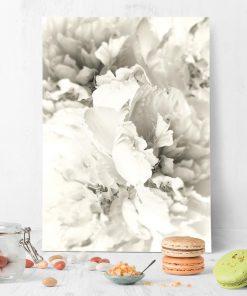 plakat z białą peonią do sypialni