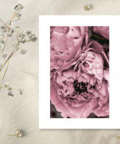 Plakat z fioletowymi kwiatami do salonu