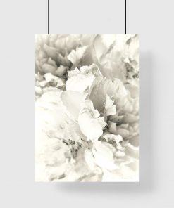 plakat w ramie z białymi kwiatami