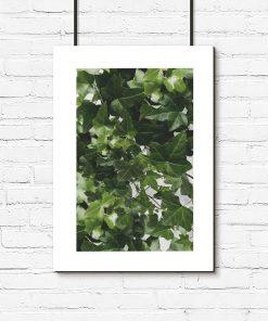 Plakat z motywem zielonej rośliny