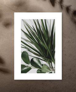 Motywy roślinne na plakacie